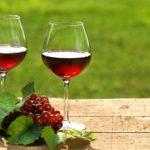 Вино в истории человечества