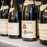 Дегустация французских вин с берегов Соны