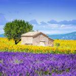 Соман-де-Воклюз – небольшая деревня в Провансе